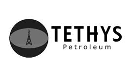 client_logos_264_tethys